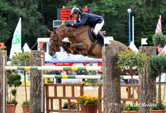 Successful Horses by Cento x Quattro B